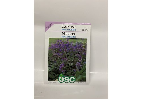 OSC Catmint