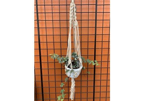 """Primitive Planters Woven Knotty Plant Hanger 42"""""""