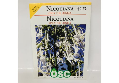OSC Flowering Tobacco Nicotiana Only The Lonely