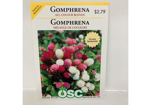OSC Gomphrena All Col. Blend
