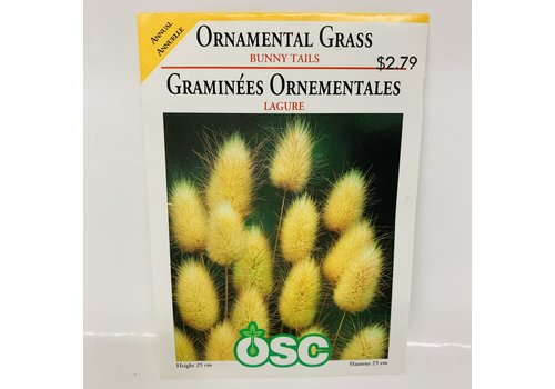 OSC Ornamental Grass Bunny Tails