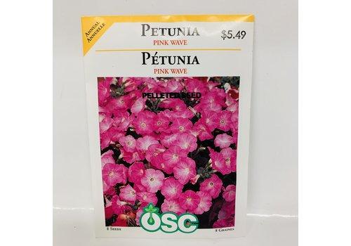 OSC Petunia Pink Wave