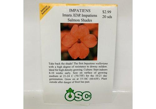 OSC Impatiens Imara Salmon