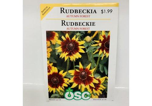 OSC Rudbeckia Autumn Forest