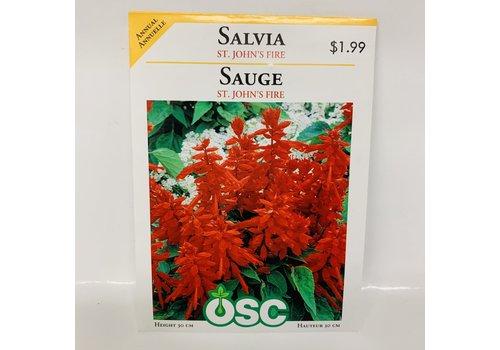 OSC Salvia St. Johns Fire