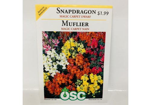 OSC Snapdragons Magic Carpet