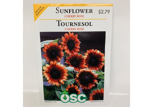 OSC Sunflowers Cherry Rose