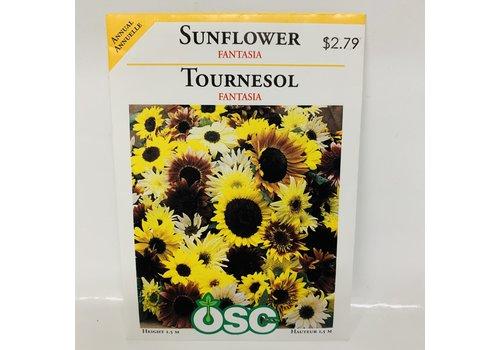 OSC Sunflowers Fantasia