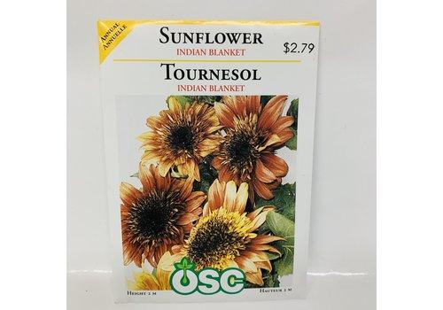 OSC Sunflowers Indian Blanket