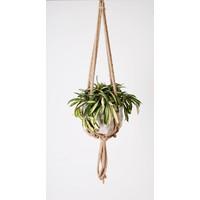 "All Natural Rope Hanger 30"""