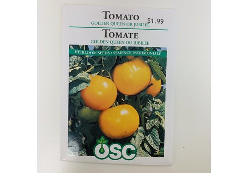 OSC Tomatoes Golden Queen