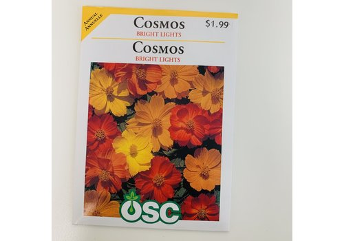OSC Cosmos Bright Lights