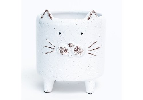 White Cat Footed Dolomite Pot