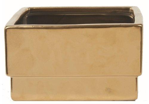 "Square Ceramic Pot Matte Gold 6x6x3.5"""