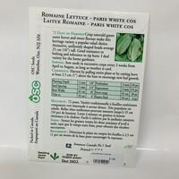 Lettuce Romaine White Cos