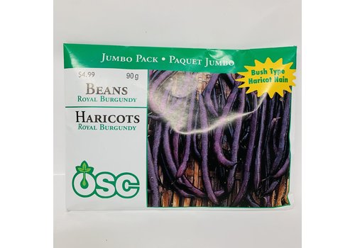 OSC Beans Royal Burgundy Jumbo Pack