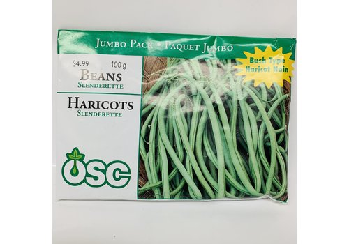 OSC Beans Slenderette Jumbo Pack