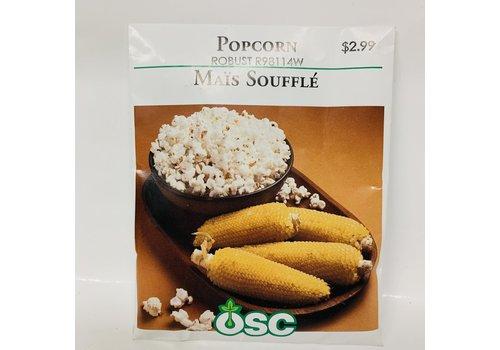 OSC Sweet Corn Popcorn Robust 2182