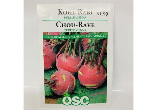 OSC Kohl Rabi Purple Vienna