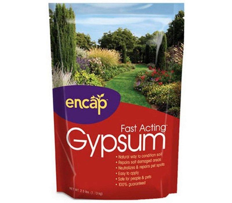 Fast Acting Gypsum 25lb