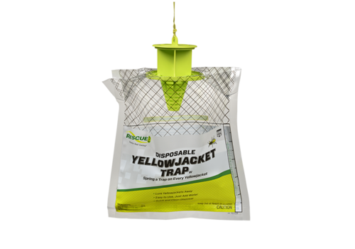 Sterling International Disposable Yellow Jacket Trap