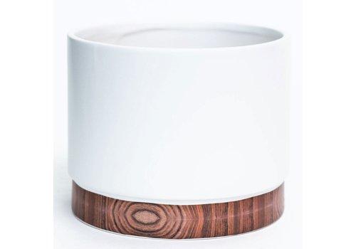 Matte White Dolomite Pot Woodgrain Base