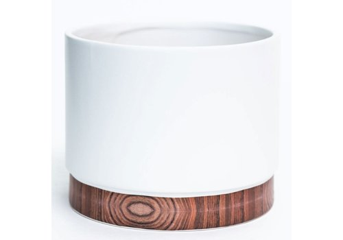 Matte White Dolomite Pot Woodgrain Effect Base