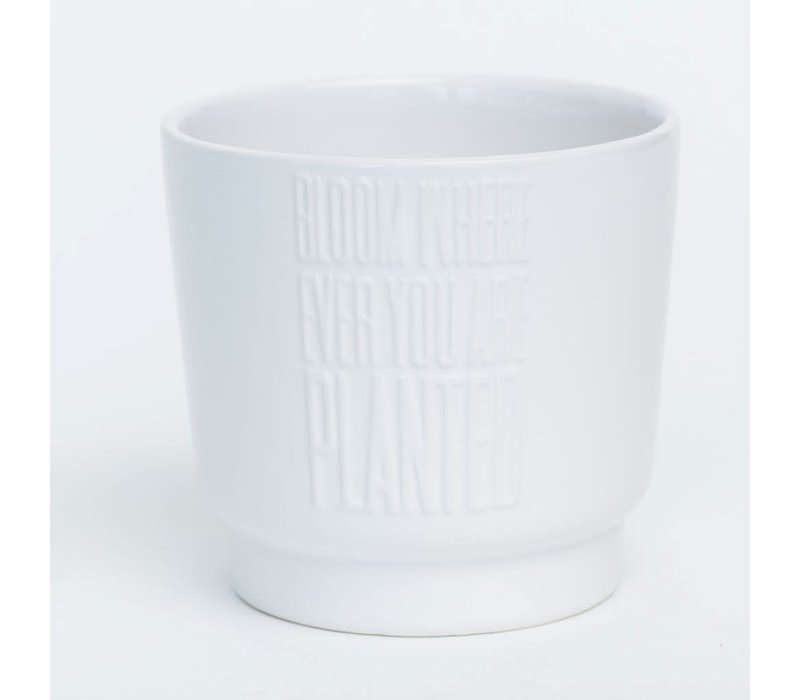 """Bloom Where Ever You Are Planted White Glazed Dolomite Pot 6.5""""x5.5"""""""