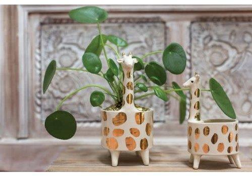 Accent Decor Giraffe Pot