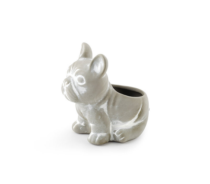 "Bulldog Planter 2.75""x2.5"""