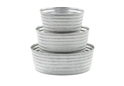 White Washed Dish Garden
