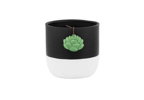 "Black Pot White Base With Succulent Hanger 4.75"""