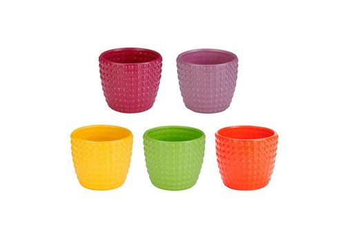 Hobnail Flower Power Planter