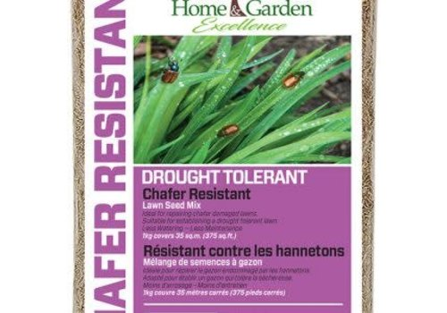 Home & Garden Excellence Lawn Seed Drought Tolerant 1kg