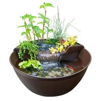 AquaGarden Mini Pond Kit Mocha