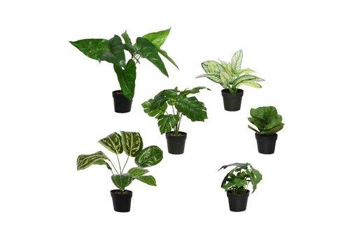 Faux Plant In Plastic Pot