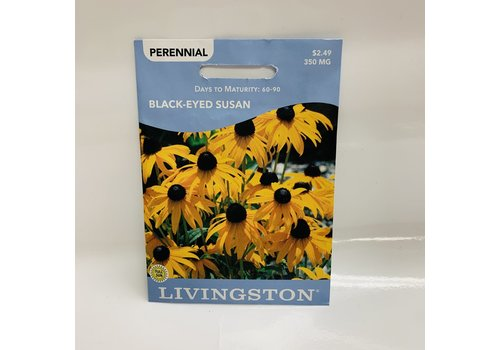 Livingston Black Eyed Susan
