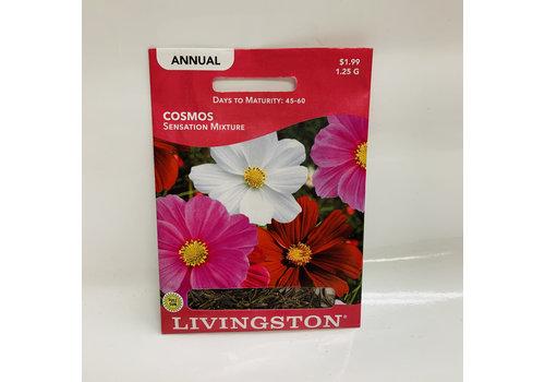 Livingston Cosmos Sensation Mix