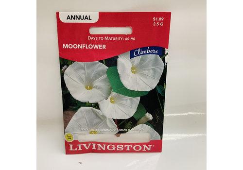 Livingston Moonflower