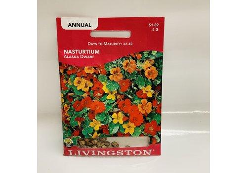 Livingston Nasturtium Alaska Dwarf