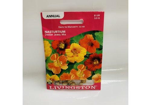 Livingston Nasturtium Dwarf Jewel Mix