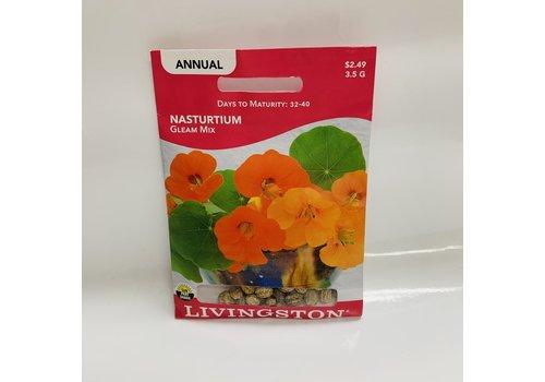 Livingston Nasturtium Gleam Mix