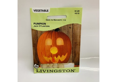 Livingston Pumpkin Jack O'Lantern