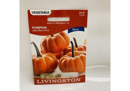 Livingston Pumpkin Jack-Be-Little