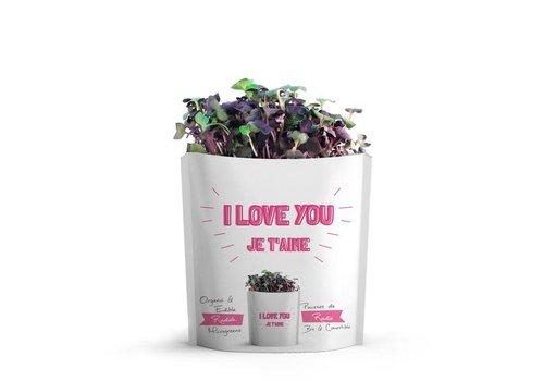 Gift-a-Green I Love You Pouch Radish Microgreens