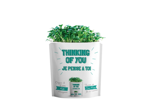 Gift-a-Green Thinking of You Pouch Kale Microgreens