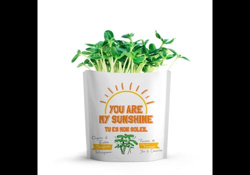 Gift-a-Green You Are My Sunshine Sunflower Microgreens