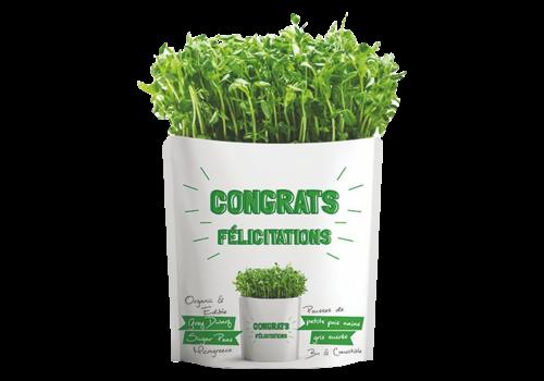 Gift-a-Green New Congrats Pouch Grey Dwarf Peas Microgreens