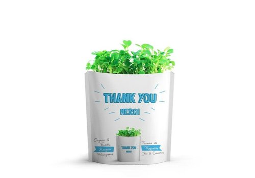 Gift-a-Green Thank You Pouch Arugula Microgreens