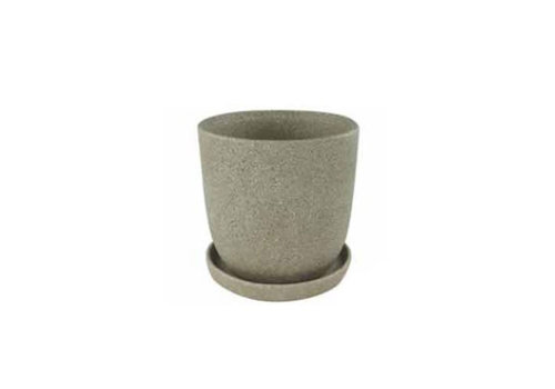 Border Concepts Eastham Egg Pot With Saucer